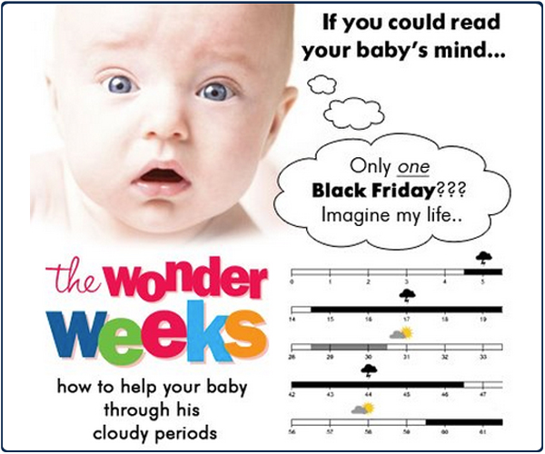 the-wonder-weeks-app-2